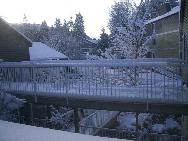 Seattle Winter